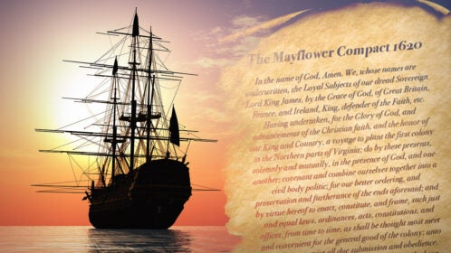 Mayflower Compact Thumb Nail 3 1280x720